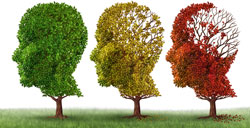 course introduction page image: Alzheimer's and Related Dementias