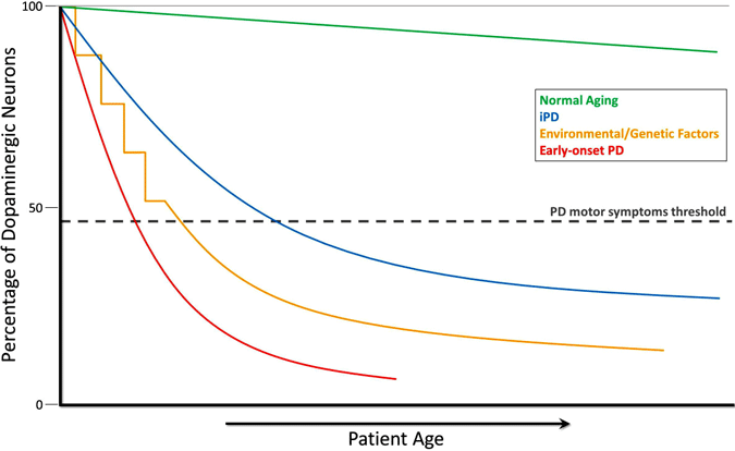 graph showing decline of dopaminergic neurons during normal aging, in idiopathic PD, in PD caused by environmental or genetic factors, and in early-onset PD