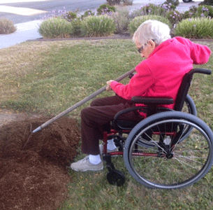 Image: helping with gardening