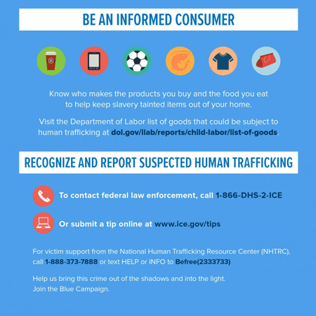 Poster: Be an Informed Consumer (to keep slavery-tainted items out of your home)