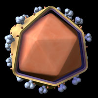 An illustration of the HIV retrovirus.