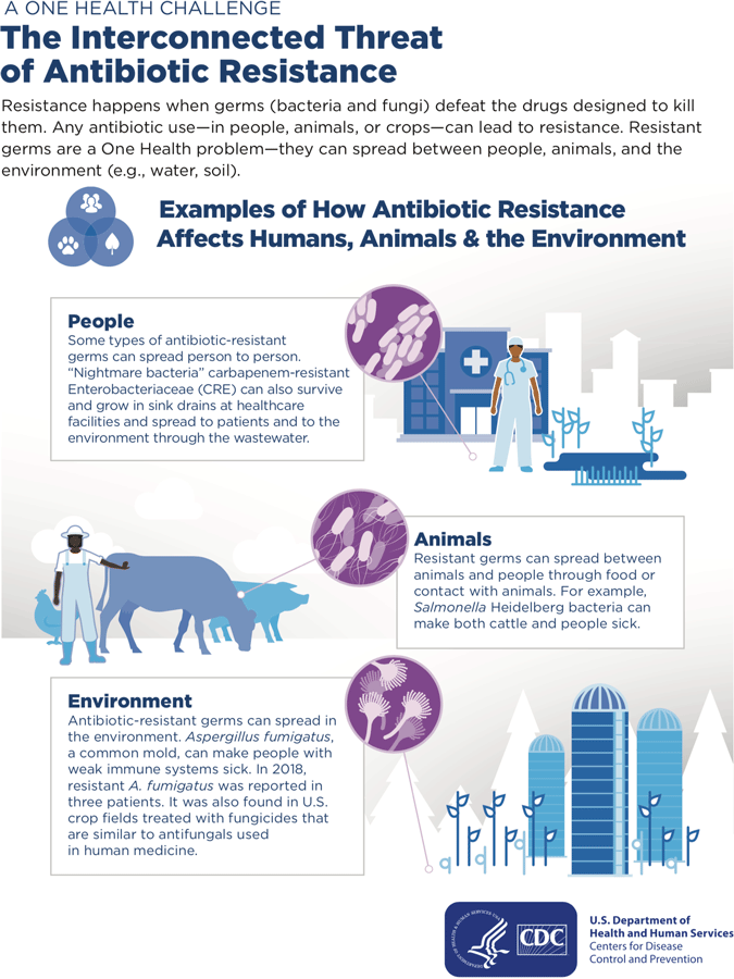 CDC Poster: The Interconnected Threat of Antibiotic Resistance