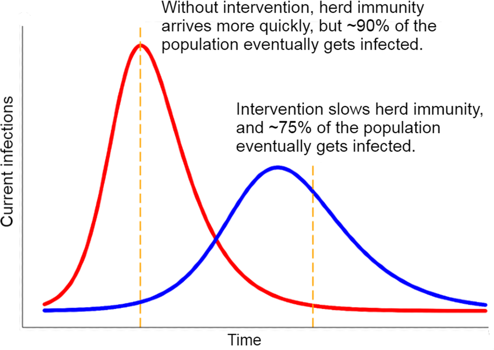 Chart: How Interventions Affect Herd Immunity