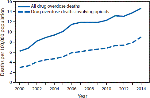 A graph comparing opioid overdose deaths to all drug overdose deaths.