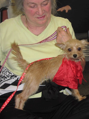 Image: pet therapy visit