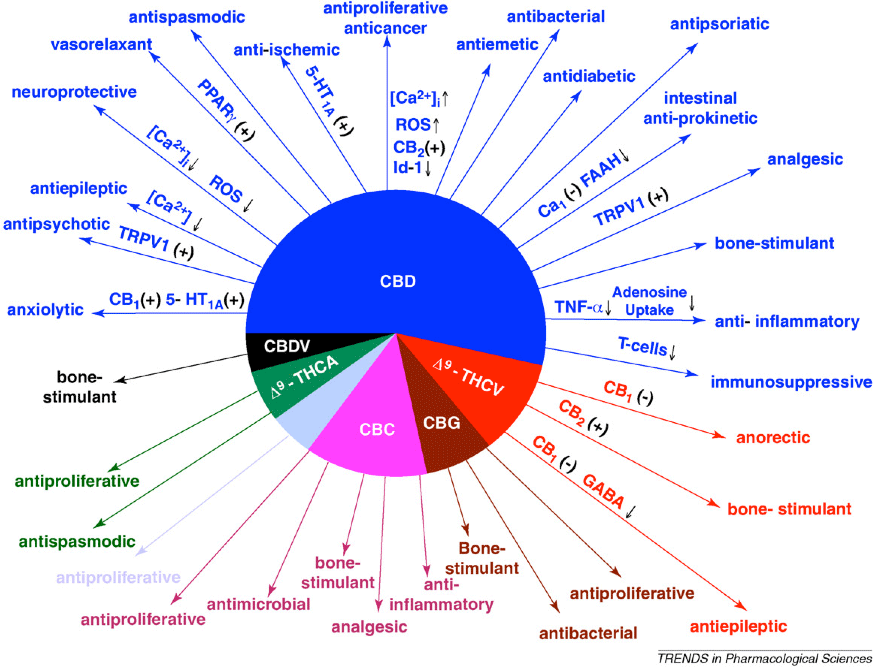 Chart: Pharmacologic Actions of Non-psychotropic Cannabinoids