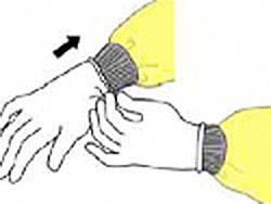 Illustration: Donning Gloves